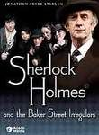 Sherlock Holmes and the Baker Street Irregulars