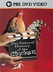 The Natural History of Chicken