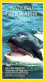 National Geographic Video - Killer Whales: Wolves of the Sea