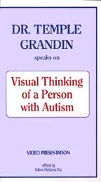 Visual Thinking of a Person with Autism