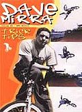 Dave Mirra - Trick Tips
