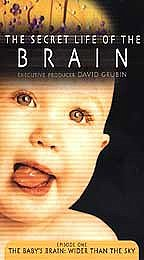 Secret Life of the Brain, The - The Baby's Brain: Wider Than The Sky