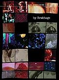 By Brakhage: An Anthology
