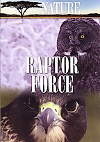 Nature - Raptor Force