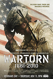 Wartorn: 1861-2010