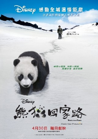 Touch of the Panda (Trail of the Panda) (Xiong mao hui jia lu)