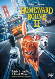 Homeward Bound 2: Lost in San Francisco Poster