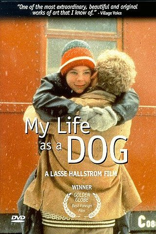 Mitt Liv som Hund (My Life as a Dog)