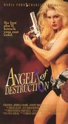 Angel of Destruction (Furious Angel)