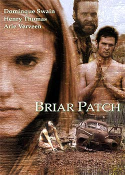 Briar Patch (Plain Dirty)