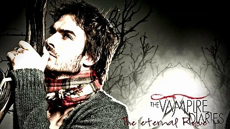 Vampire Diaries Banner-Damon Eternal Rouge