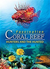 Fascination Coaral Reef: Hunters & The Hunted